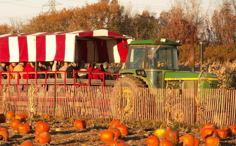Westview Orchards to feature Made-in-Michigan food products on Sundays thisfall